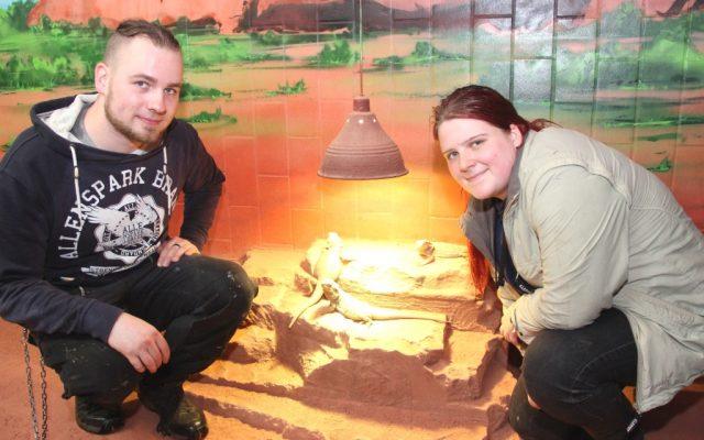 Claudia Höfer aus Mönchengladbach und Jonas Löckmann aus Wuppertal haben im August in der Fauna eine Ausbildung zum Zootierpfleger begonnen. (Foto: B. Glumm)