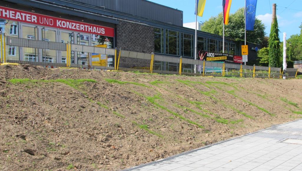 """Guerilla-Gardening in Solingen: Wenn schon die Treppe nicht gebaut wird, hat ein Scherzkeks zumindest den Schriftzug """"Treppe"""" exakt an der Stelle ausgesät, wo sie eigentlich hätte gebaut werden sollen. (Foto: B. Glumm)"""