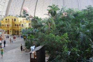 In der Halle befinden sich nicht nur mehrere Schwimmbereiche, auch hat man einen üppigen Regenwald angepflanzt. (Foto: © Bastian Glumm)