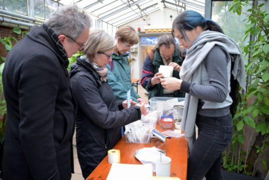 Viele Gartenfreunde waren zur dritten Saatgutbörse in den Botanischen Garten gekommen. Sie holten sich Informationen und tauschten Saatgut. (Foto: © Martina Hörle)