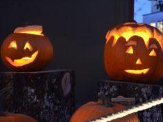 Ausgehöhlte Kürbisse sind zu Halloween ein echter Klassiker. Vielerorts gibt es Kostümfeste. (Foto: © Martina Hörle)