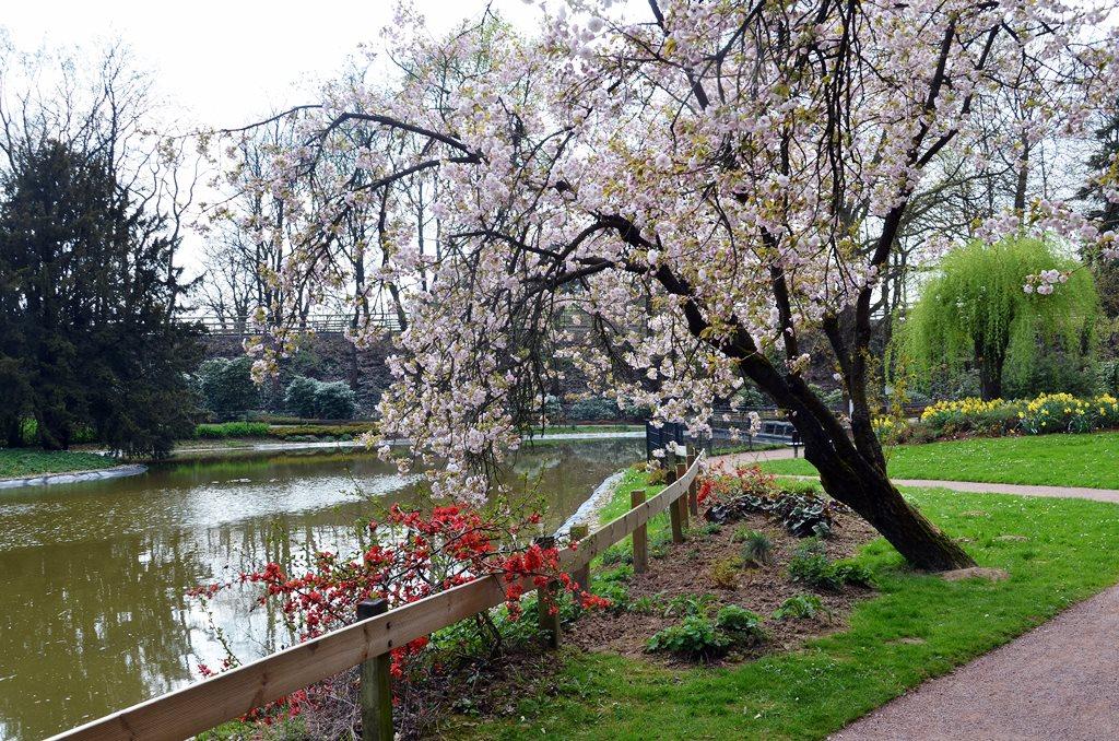 Botanischer Garten rüstet zum Frühling | Das SolingenMagazin