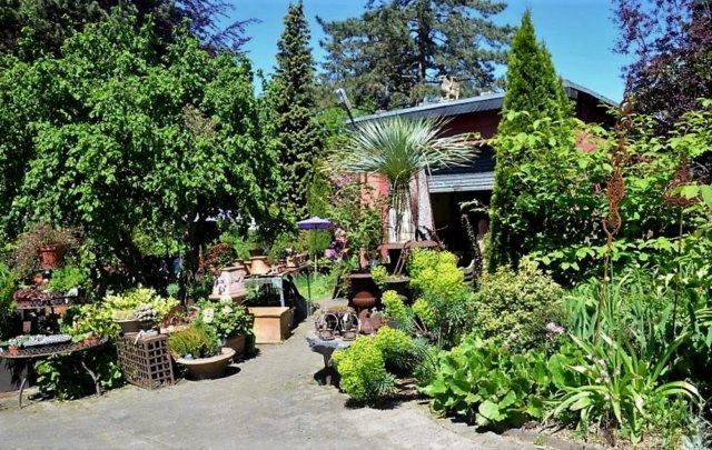 Garten Ulbrich beteiligt sich seit zwölf Jahren bei der Offenen Gartenpforte. Die Anlage weist mittlerweile über 1.500 Arten an Gehölzen und Pflanzen auf. (Foto: © Martina Hörle)