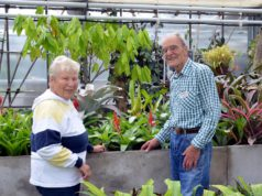 Dr. Hans-Werner Hammen und seine Frau Margarete führen die Besucher durch das Bromelienhaus. Dabei erzählen sie viel Wissenswertes und geben Tipps zu Pflege und Haltung. (Foto: © Martina Hörle)