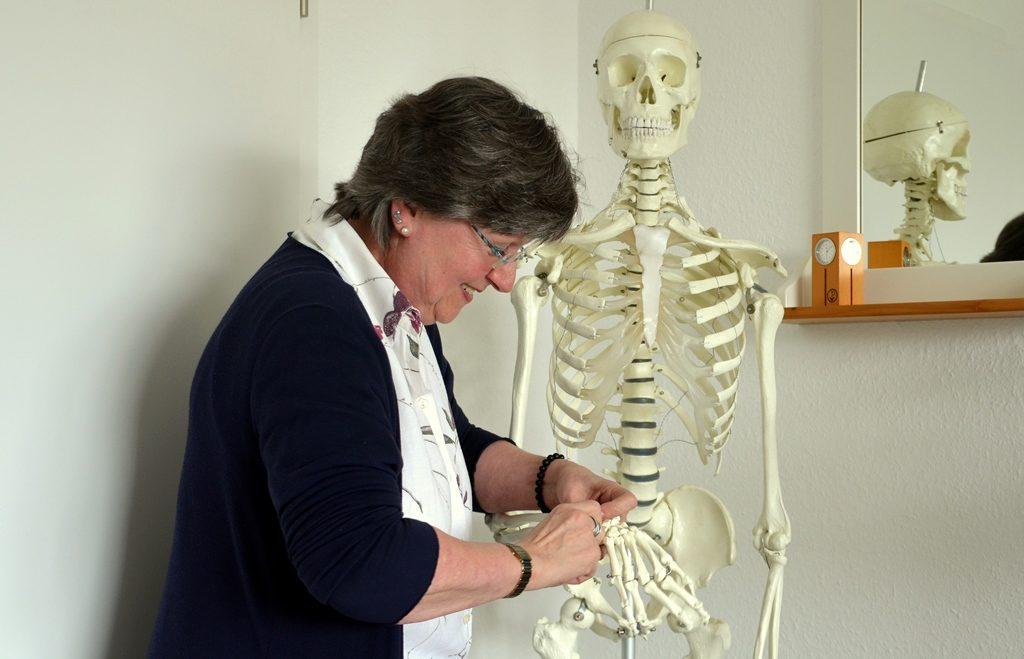 Das Zusammenspiel von Gelenken, Muskeln, Bändern und Sehnen ist hochinteressant. Deshalb hat sich Barbara Zipfler auf Chiropraktik spezialisiert. (Foto: © Martina Hörle)