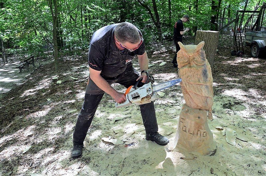 Hier arbeitet Kettensägenschnitzer Martin Schröder aus einem Baumstamm einen Uhu. Diese wunderbare Skulptur wird in der Fauna verbleiben. (Foto: © Martina Hörle)
