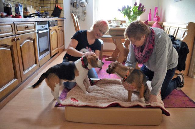 Die Fellfreunde Judith Biermann (li.) und Carola Horlemann setzen sich intensiv für Hunde in Ungarn ein. (Foto: © Martina Hörle)
