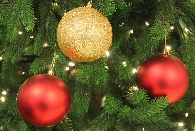 Wir wünschen allen Leserinnen und Lesern ein frohes Weihnachtsfest und einen guten Rutsch ins neue Jahr! (Foto: © Bastian Glumm)