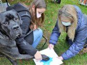 Am Stand von Karen Ulrich und Michael Boeck konnten Hundebesitzer Pfotenabdrücke ihrer Vierbeiner machen lassen. So manche Fellnase fragte sich, ob das mit der Farbe wirklich ernst gemeint war. (Foto: © Martina Hörle)