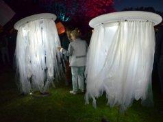 Diese Lichtwesen schwebten bei der Lichternacht unter der Baumallee und sorgten für stimmungsvolle Beleuchtung. (Foto: © Martina Hörle)