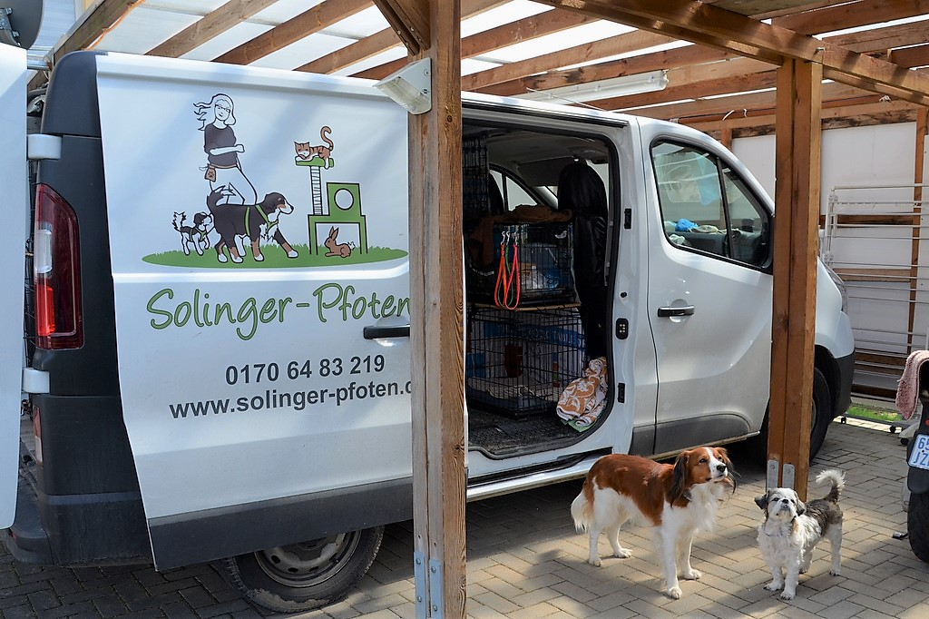 Mit ihrem Transporter fährt die Dogwalkerin regelmäßig auf Tour, um alle Gassi-Hunde zum gemeinsamen Spaziergang abzuholen. Jedes Tier hat seine eigene Box. (Foto: © Martina Hörle)