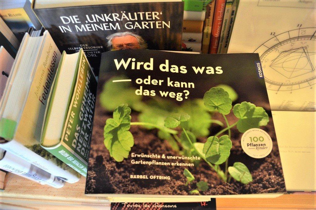"""Ulrike Sokul liebt neben Büchern auch die Natur und hält sich gerne in ihrem Garten auf. """"Ich besitze zwei grüne Daumen"""", sagt sie stolz. (Foto: © Martina Hörle)"""