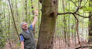 Ernst Nowak ist einer der Wupper-Tells. Er führt gerne Gruppen durch den Flüsterwald und weist auf die Einzigartigkeiten in der Natur hin. (Foto: © Martina Hörle)