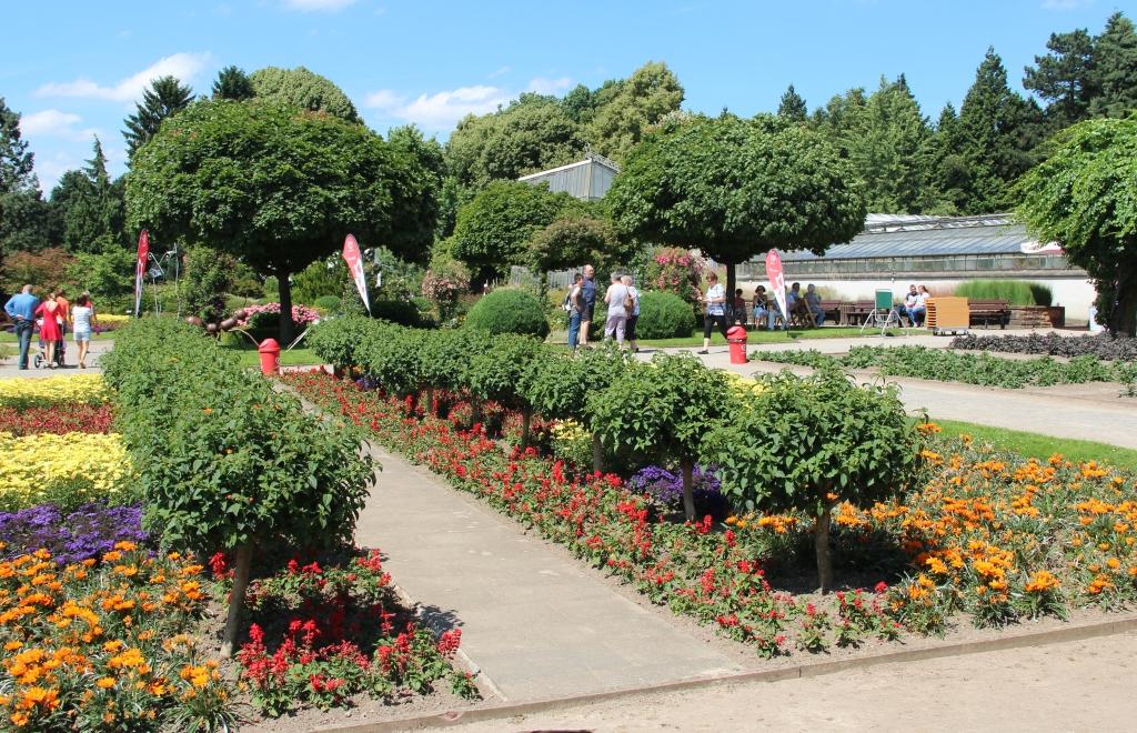 Entwässerung im Botanischen Garten wird umgebaut | Das ...