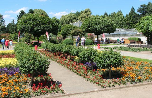 Mit dem traditionellen Ostereiersuchen startet der Botanische Garten am Ostersonntag in die neue Saison. (Archivfoto: © Bastian Glumm)