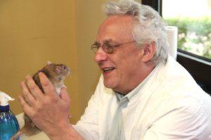 Dr. Stephan Flechsig aus Bochum ist zweiter Vorsitzender des Rattenschutz- und Zuchtbundes. Er ist zudem Preisrichter und begutachtet jedes der rund 60 am Sonntag in der Fauna ausgestellten Tiere. (Archivfoto: © B. Glumm)