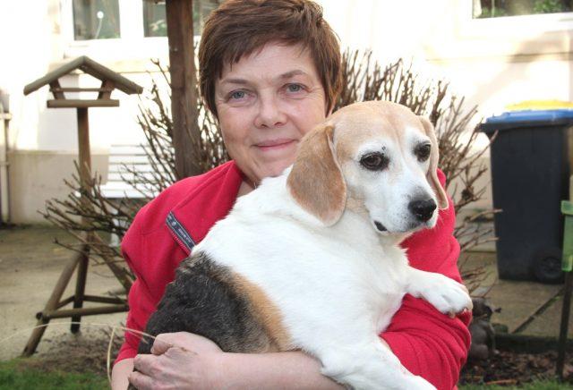 Carola Horlemann vom Verein Fellfreunde mit Beagledame Bigi. Aus einem ungarischen Tierheim vermittelt die engagierte Solingerin Hunde nach Deutschland. (Foto: © B. Glumm)