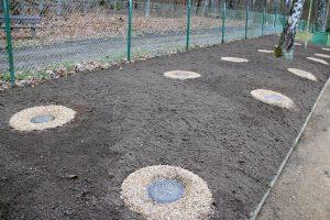 Eine neue Form der Baumbestattung wird ebenfalls auf dem Burg-Friedhof angeboten. Bis zum Frühjahr soll hier ein Rasen gewachsen sein. (Foto: © B. Glumm)