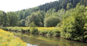 Das Solinger Gewässernetz umfasst mehr als 200 Fließgewässer. Für die Unterhaltung sind sowohl der Bergisch-Rheinische Wasserverband also auch der Wupperverband in enger Abstimmung mit der Unteren Wasserbehörde Solingen zuständig. (Archivfoto: © Bastian Glumm)