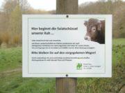 """Am Börkhauser Bach sind nun einige Trampelpfade gesperrt worden. Schilder weisen darauf hin. Sie zeigen eine Kuh mit dem Ausspruch: """"Hier beginnt meine Salatschüssel"""". (Foto: © Stadt Solingen)"""