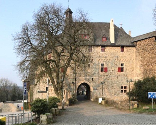 Am Dienstag, 9. Juli, wird die große Roßkastanie vor dem Eingang von Schloss Burg gefällt. (Foto: © Martina Hörle)