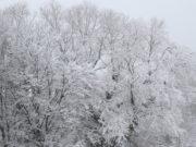 Aufgrund der starken Schneefälle kam es am Spnntag im gesamten Solinger Stadtgebiet zu einer Vielzahl von Einsätzen für die gesamte Solinger Feuerwehr. (Foto: © Bastian Glumm)