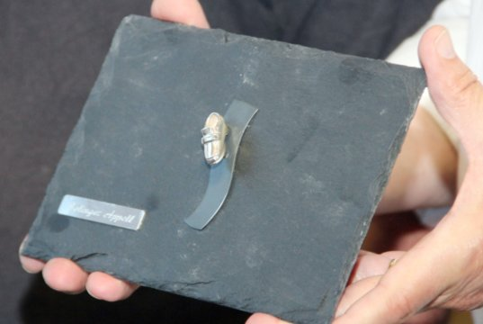 """Im vergangenen Jahr wurde der Solinger Appell mit dem """"Silbernen Schuh"""" ausgezeichnet. (Archivfoto: © Bastian Glumm)"""