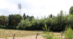 Das Stadion am Hermann-Löns-Weg stirbt einen sehr langsamen Tod. Längst sind die Stehränge so dicht bewachsen, dass das Stadion nur noch schwer als solches zu erkennen ist. Man wartet auf die Abrissbagger. (Foto: © B. Glumm)