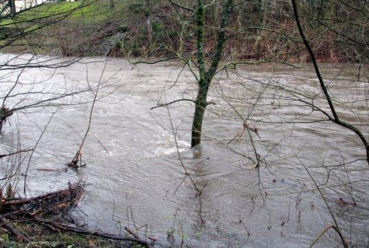 Die Wupper führte Hochwasser und drohte in Unterburg die Wupperinsel zu überfluten. (Symbolfoto: © Bastian Glumm)