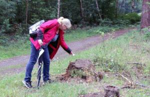 """Petra Schöneweiß legt einen """"Wupperstein"""" in der Ohligser Heide aus. Spaziergänger dürfen diesen mitnehmen und neu auslegen - oder behalten. (Foto: © Bastian Glumm)"""